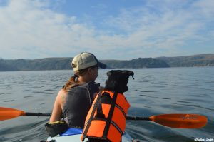 Liz and Gila dog kayaking
